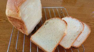所さんの目がテンでパンが魚焼きグリルでモッチモチ!!