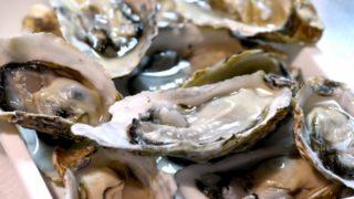 牡蠣は海のミルク効能効果と成分が元気を作る